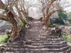 Leading to the upper level of Wat Phu
