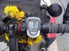 10,000kms!