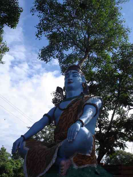 Shiva with a tree growing from his head