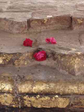 Gold leaf pleaced by devotes on the remains of an ancient temple in Sarnath